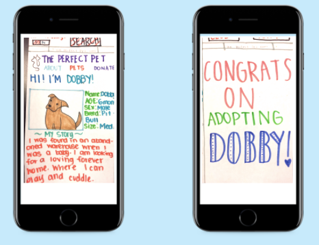 theperfectpet, an app to improve adoption experience to alleviate overcrowding in shelters